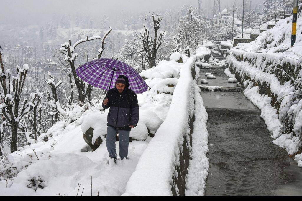 snow representation